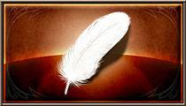 柔らかい羽の画像