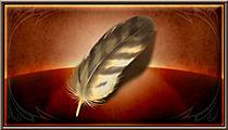 鷹の羽の画像